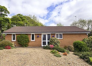 Thumbnail 3 bed detached bungalow for sale in Shoreswood, Sharples, Bolton