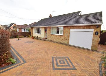 Thumbnail 2 bed detached bungalow for sale in Poringland Road, Stoke Holy Cross, Norwich