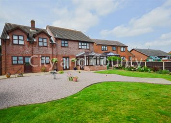 Thumbnail 4 bed detached house for sale in Dowsdale Bank, Whaplode Drove, Spalding