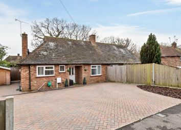 Thumbnail 2 bed bungalow to rent in Thistley Lane, Cranleigh