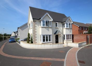 Thumbnail 3 bed detached house for sale in Porter Grove, Cranbrook, Exeter