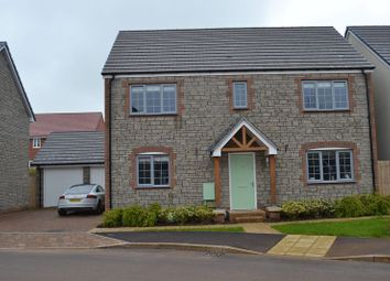 Thumbnail 4 bed detached house to rent in Wand Road, Wells