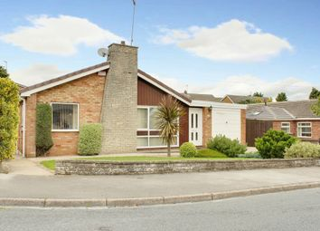 Thumbnail 3 bed detached bungalow for sale in Northfield Road, Beverley