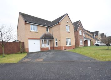 Thumbnail 4 bedroom detached house for sale in Charn Terrace, Motherwell