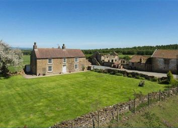 Thumbnail 3 bed detached house to rent in Gilling East, York