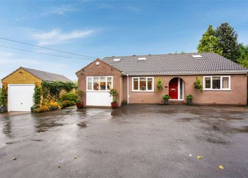 Thumbnail 4 bed detached bungalow for sale in Highstairs Lane, Stretton, Alfreton, Derbyshire