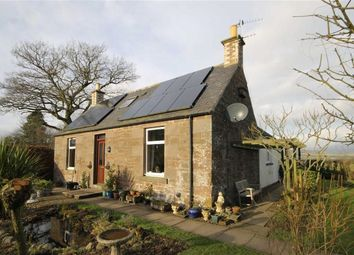 Thumbnail 4 bed cottage for sale in Westmuir, Brechin, Angus