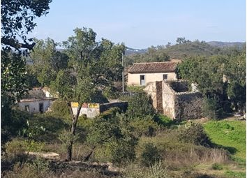 Thumbnail 20 bed cottage for sale in Cf353, Santa Catarina, Portugal