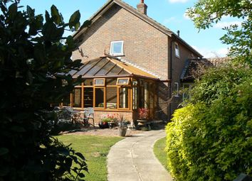Thumbnail 3 bedroom detached house for sale in Church Close, Pulham St. Mary, Diss