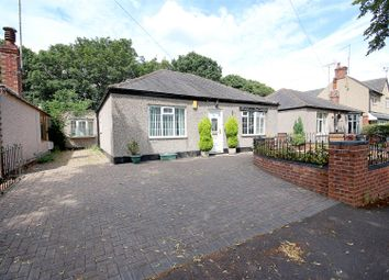 Thumbnail 5 bed detached bungalow to rent in Dalewood Avenue, Sheffield