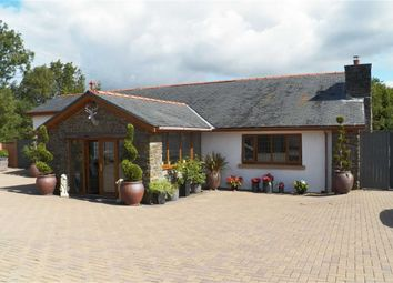 Thumbnail 5 bed detached bungalow for sale in Carway, Kidwelly