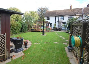 Thumbnail 4 bed semi-detached house to rent in Severals Cottage, Swarraton, Alresford