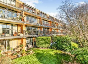 Thumbnail 2 bed flat for sale in Bingham Court, Graham Road, Sheffield, South Yorkshire