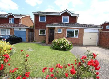 Thumbnail 4 bed detached house to rent in Shilburn Way, Woking