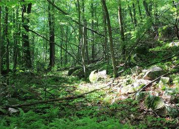 Thumbnail Land for sale in Conant Valley Road Pound Ridge, Pound Ridge, New York, 10576, United States Of America