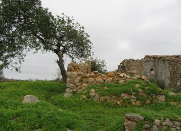 Thumbnail Land for sale in Portugal, Algarve, São Bras De Alportel