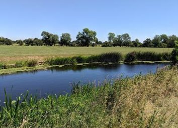 Thumbnail Land to let in River Fishing, River Beult, Cross-At-Hand, Staplehurst, Kent