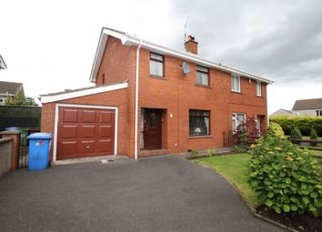 Thumbnail 3 bedroom semi-detached house to rent in Down Royal, Lisburn