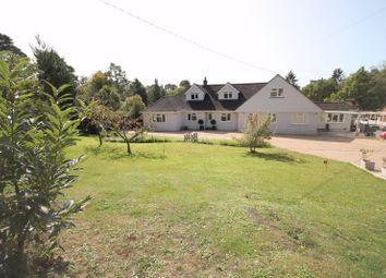 Thumbnail 6 bed detached house for sale in Bracken Lane, Storrington, Pulborough
