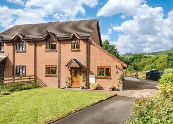 Thumbnail 4 bed detached house for sale in Franksbridge, Llandrindod Wells