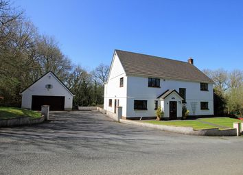 Thumbnail 4 bed detached house for sale in Pentrepoeth Road, Idole, Carmarthen, Carmarthenshire