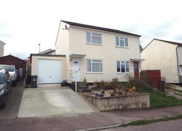 Thumbnail 2 bed semi-detached house for sale in Axminster, Devon