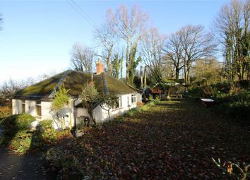 Thumbnail 2 bed bungalow to rent in Lydart, Monmouth