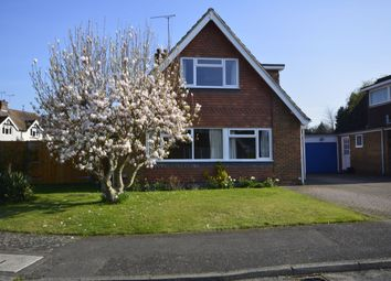 Thumbnail 4 bed bungalow to rent in Tilefields, Hollingbourne, Maidstone