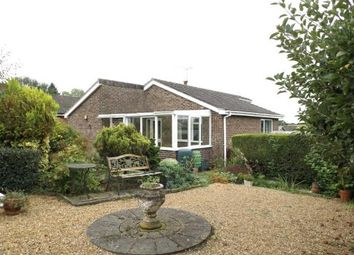 Thumbnail 3 bedroom bungalow for sale in Sporle, King's Lynn