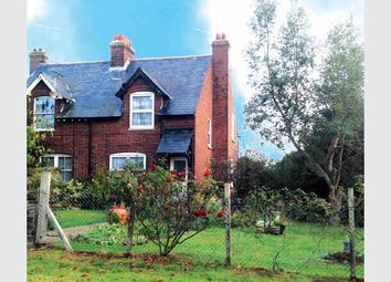 Thumbnail 3 bed semi-detached house for sale in 57 St Stephens Road, Cold Norton, Essex