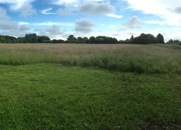 Thumbnail Land for sale in Old Church Road, Terrington St. John, Wisbech