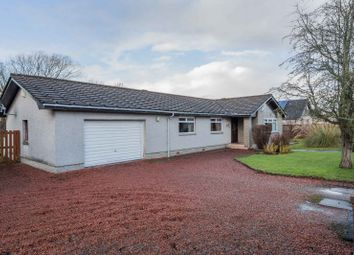 Thumbnail 4 bed bungalow for sale in Draffan Road, Netherburn, Larkhall, South Lanarkshire