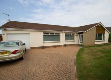 Thumbnail 4 bed detached bungalow for sale in Mansefield Road, Berwick-Upon-Tweed, Northumberland