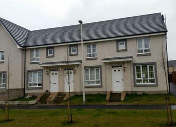 Thumbnail 3 bed shared accommodation to rent in Shielhill Grove, Aberdeen