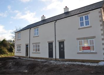 Thumbnail 2 bed terraced house for sale in The Forge, Gilsland, Cumbria.