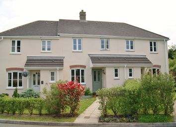 Thumbnail 3 bed terraced house to rent in Monkey Puzzle Drive, Okehampton