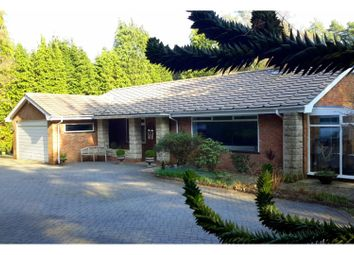 Thumbnail 3 bed detached bungalow for sale in Hurn Road, Ringwood