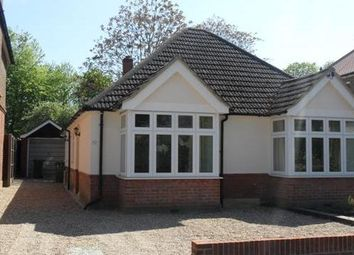 Thumbnail 3 bedroom bungalow to rent in Chingford Avenue, Farnborough