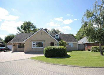 Thumbnail 5 bedroom detached bungalow to rent in Wanshot Close, Wroughton, Swindon Wiltshire