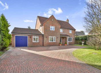Thumbnail 4 bedroom detached house for sale in Greenfields Road, Dereham