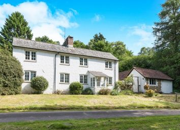 Thumbnail 3 bed detached house to rent in Hammer Vale, Haslemere