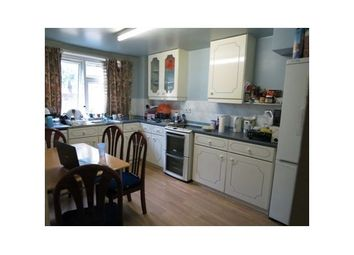 Thumbnail 4 bed maisonette to rent in Campbell Road, Bow