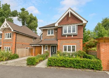 Thumbnail 4 bed detached house to rent in Woodpecker Chase, Lindfield, Haywards Heath