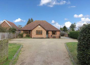 Thumbnail 4 bed bungalow for sale in Holbrook Road, Stutton, Ipswich, Suffolk
