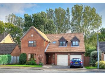 Thumbnail 5 bed detached house for sale in Quebec Close, Norwich