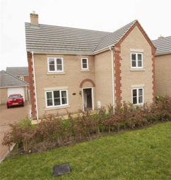 Thumbnail 4 bed detached house for sale in Snowdrop Grove, Downham Market, Norfolk