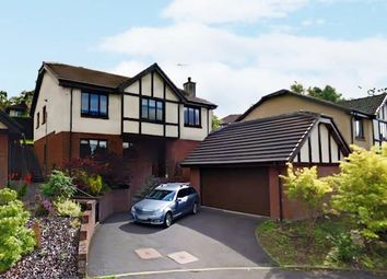 Thumbnail 5 bed detached house for sale in Menteith View, Dunblane