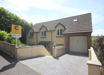Thumbnail 5 bed detached house for sale in Bunting Close, Newton Abbot