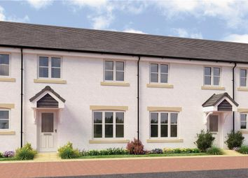 "Thumbnail 3 bedroom mews house for sale in ""Munro Mid Terr"" at Monifieth"