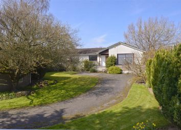 Thumbnail 4 bed bungalow for sale in Ruberslaw, Midlem, Selkirk